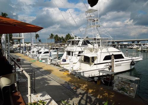 Miami39-Bayfront