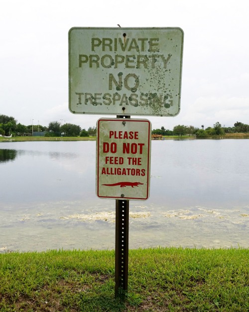 Alligators Sign